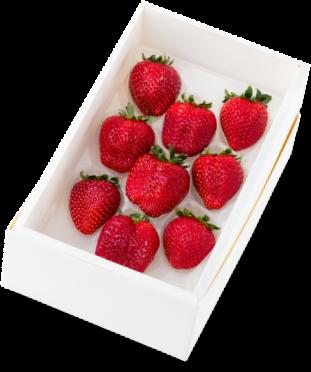 イチゴ「真紅の美鈴」